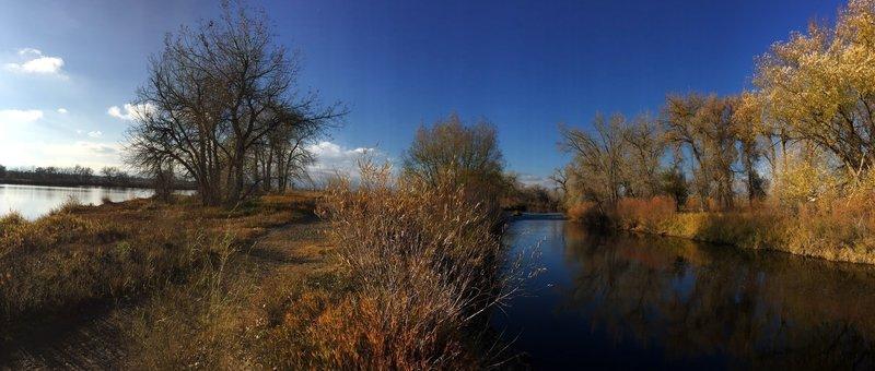 View betwen the Big Bass Pond and Cache la Poudre River.