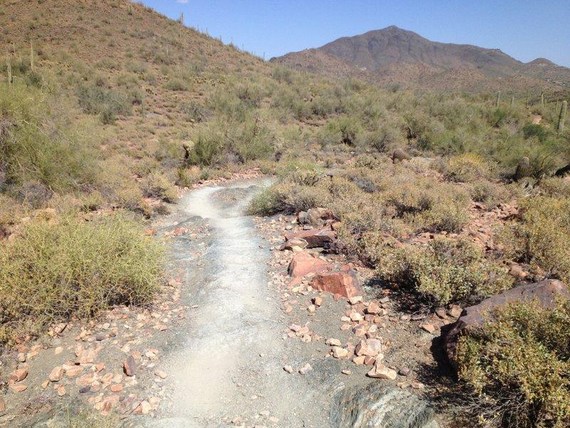 """Slate """"steps"""" on the Slate Trail."""