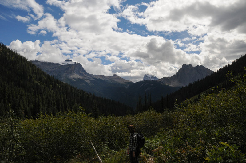 Wapta Mountain and Mount Burgess are clearly visible from Emerald Valley
