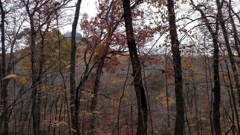 Pilot Mountain viewed from Grassy Ridge Trail