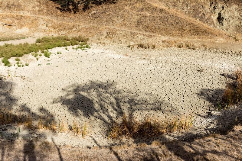 A very dry pond next to Ridgeline Trail
