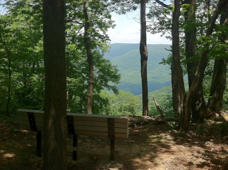 Bench at an outlook over the Youghiogheny River Gorge at the far point on the McCune Trail