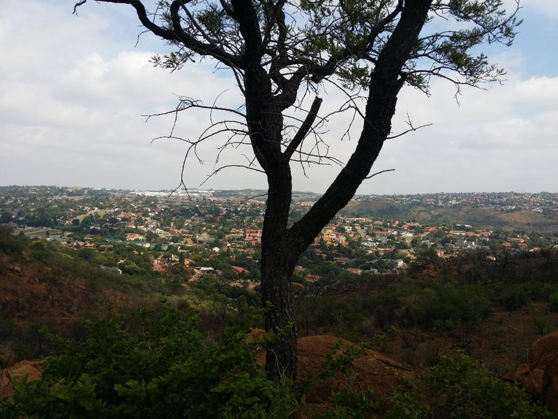 A view of suburbia from the Sunbird Trail.