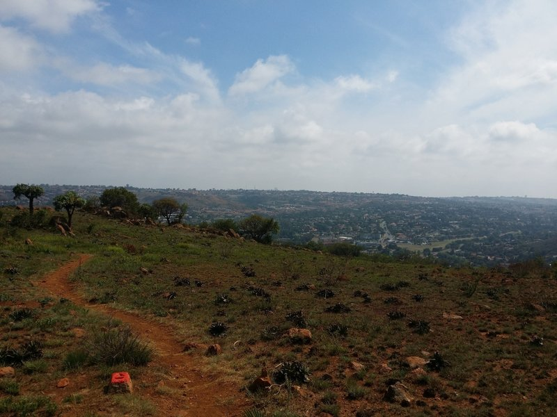 A view from the Sunbird Trail ascent.