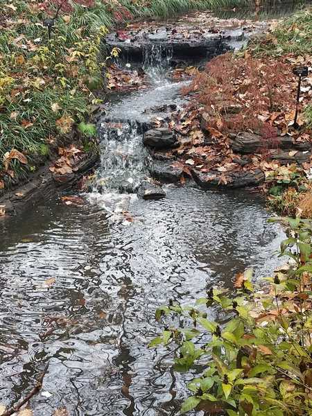 Autumn Waterfall-Woodland Garden at Powell Gardens