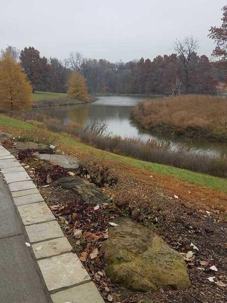 Lake view in Autumn-Powell Gardens