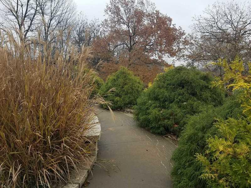 Fall Color in the Fountain Garden-Powell Gardens
