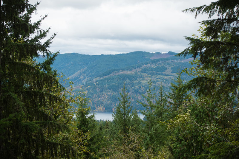 Lake Whatcom is visible from the top of the trail, but really you'll have a better view of Stewart Mountain.