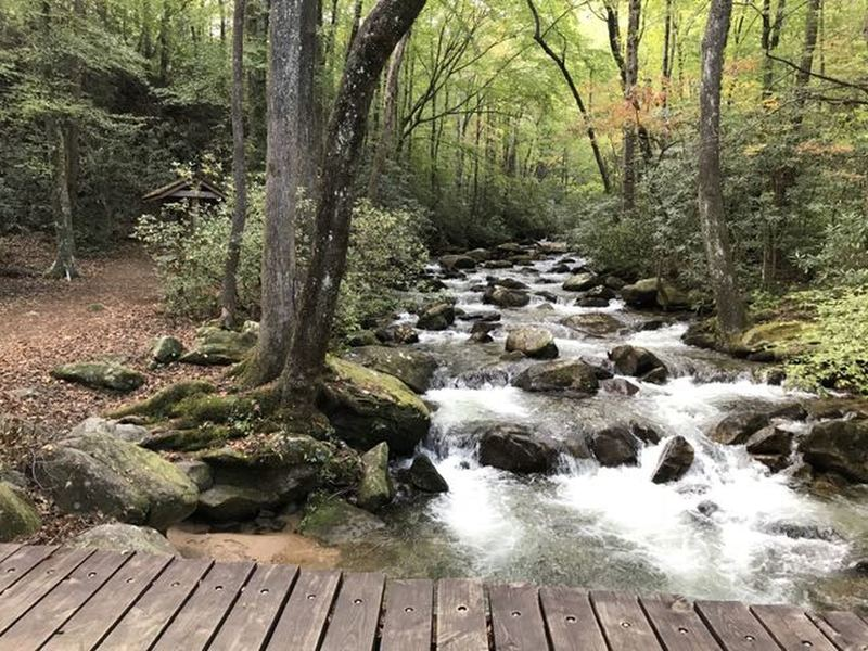 The Middle Saluda River near and across on Jones Gap Trail (to the left TH in pic and across bridge standing on, Jones Gap Ranger Station and emergency 911 phone since no cell signal).