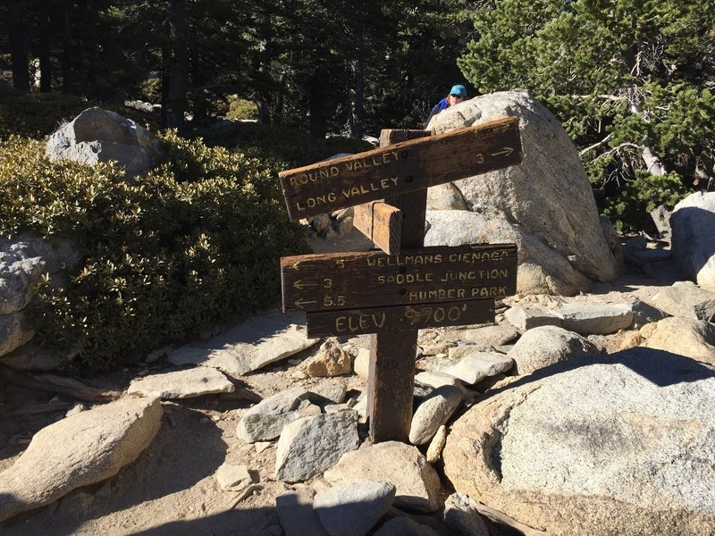 Trail junction marker, Wellman Divide