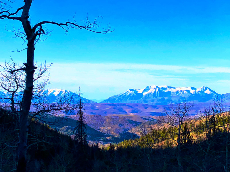 Mt. Timpanogos from upper part of Yellow Pine Trail.