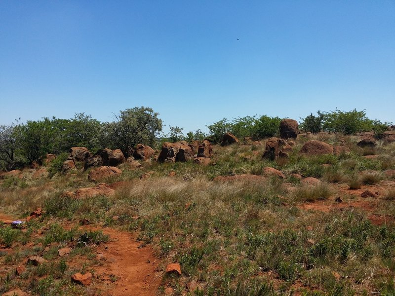 A view of the Legae Trail's gentle boulder hopping.