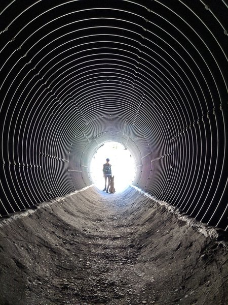 Don't forget to take a surreal picture in the culvert