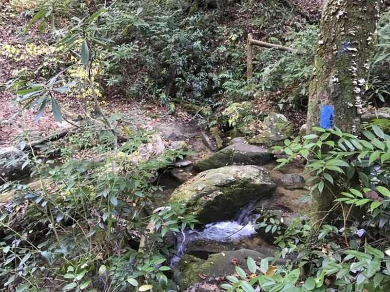 Will have a couple of small easy water crossings in the lower part of the trail.