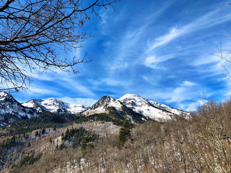 Box Elder Peak from Silver Lake Flat Connector Trail
