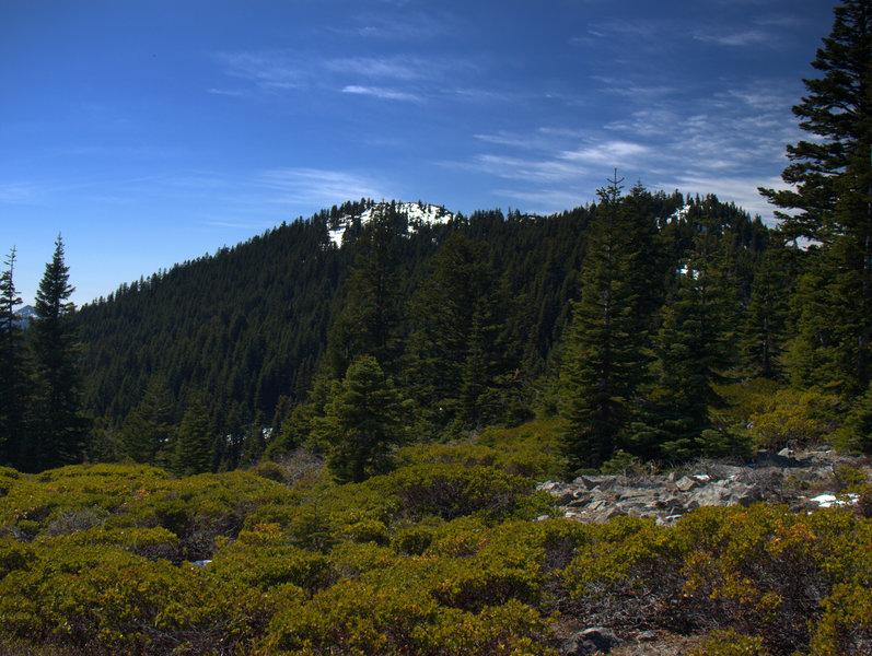 Grayback Mountain from Big Sugarloaf Peak