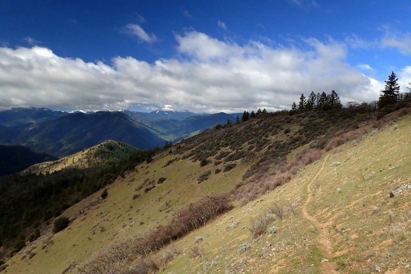 The Siskiyou Crest from the #918 Trail