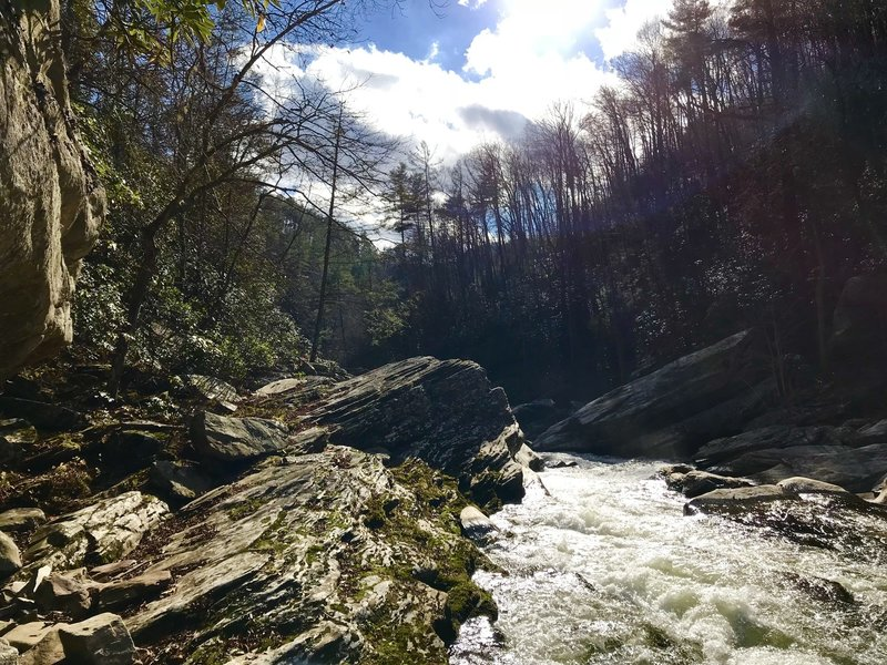 Rapids on the Linville River