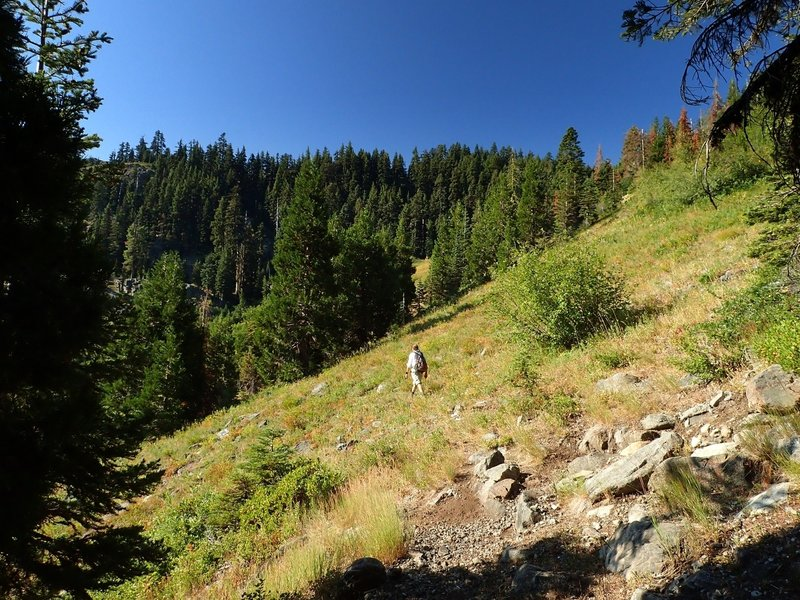 Starting the switchbacks on the #900 trail