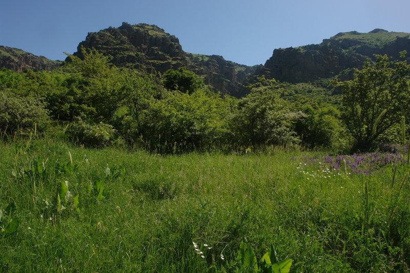 In the Khosrov National Park
