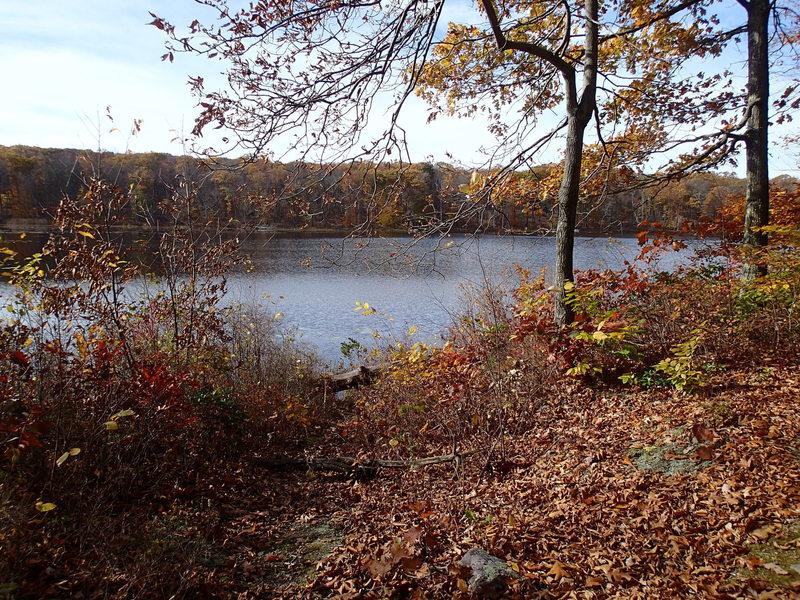 View of Durham Pond