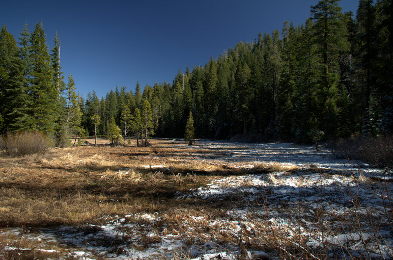 The south end of the meadow at Frog Pond