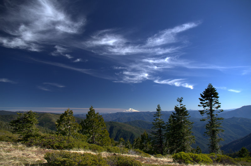 Mount Shasta viewed from where the #958 joins the PCT