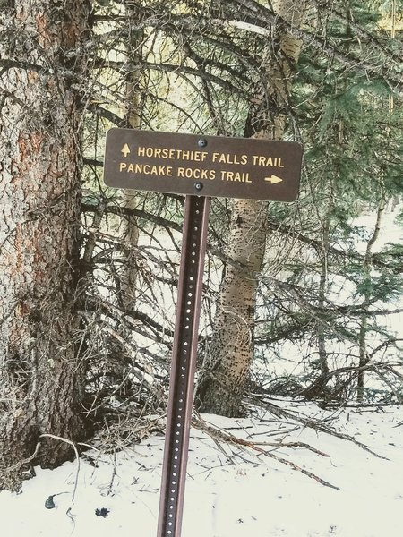 Updated Signage. The trail is very well identified at this junction.