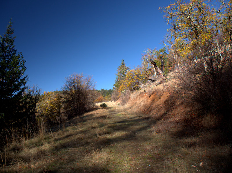 The trail is an old road just above the lower trailhead