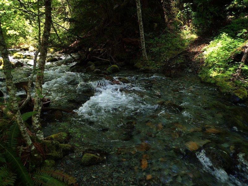 Lower Bear Gulch Creek at high water