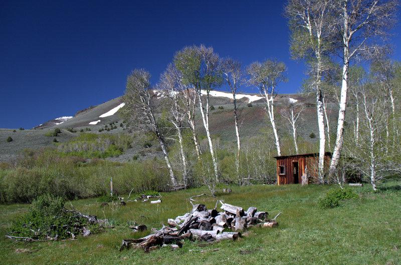 The historic Barnhardi Cabin (line shack)