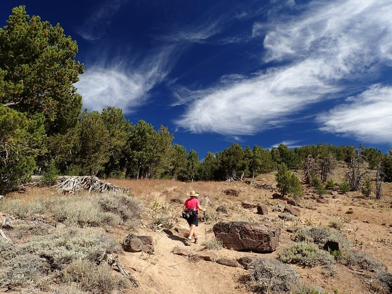On the Summit Trail toward Patterson Lake