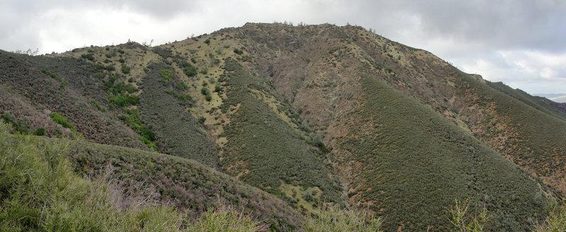 Eagle Peak seen from Back Creek Trail.