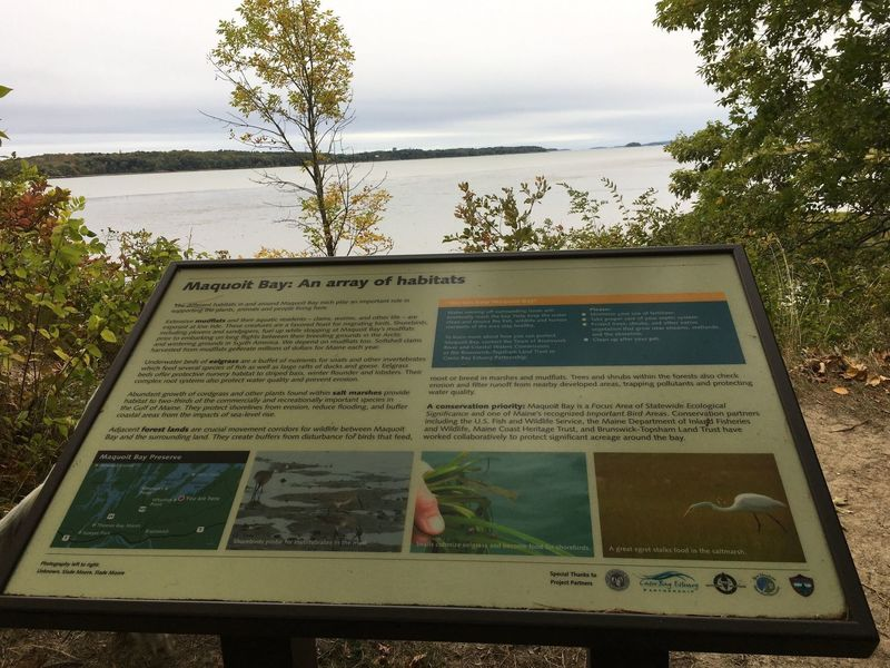 Informational sign at trail end overlooking Maquoit Bay