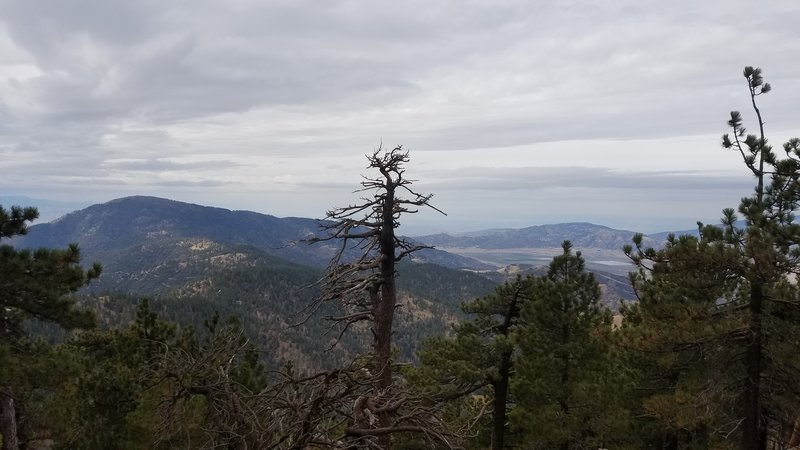 A view from near the summit of Tehachapi Mountain