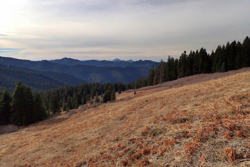 The meadow east of Lake Mountain; Preston Peak on the horizon
