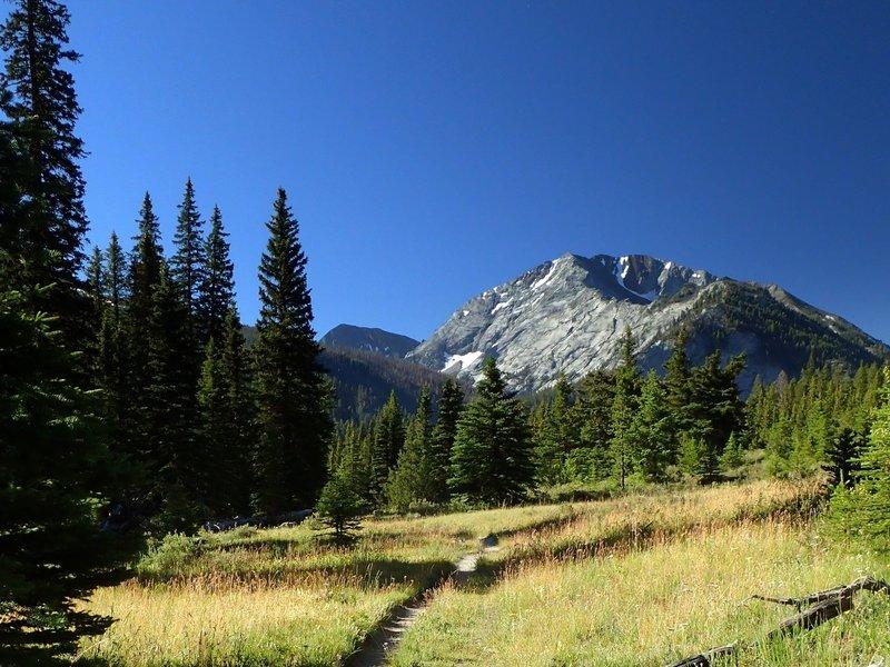 Sacajawea Peak from the #1807 trail