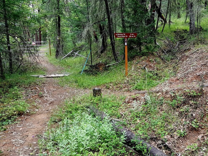 Junction of the Sterling Mine Ditch Trail and the Grub Gulch access trail