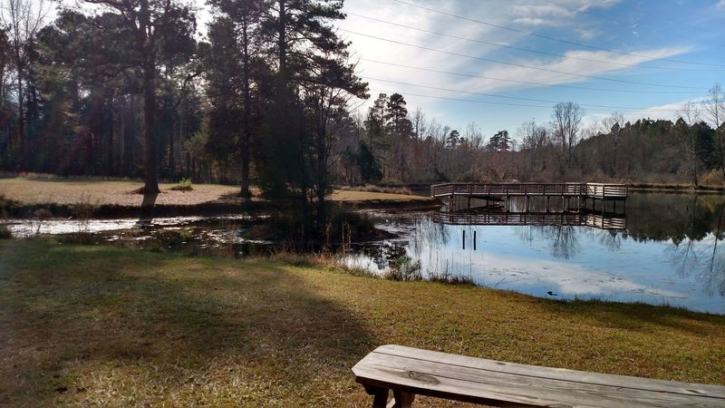 Pond on Flat Tail Trail.