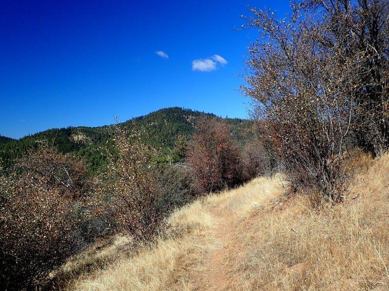 High up on the Grub Gulch access trail