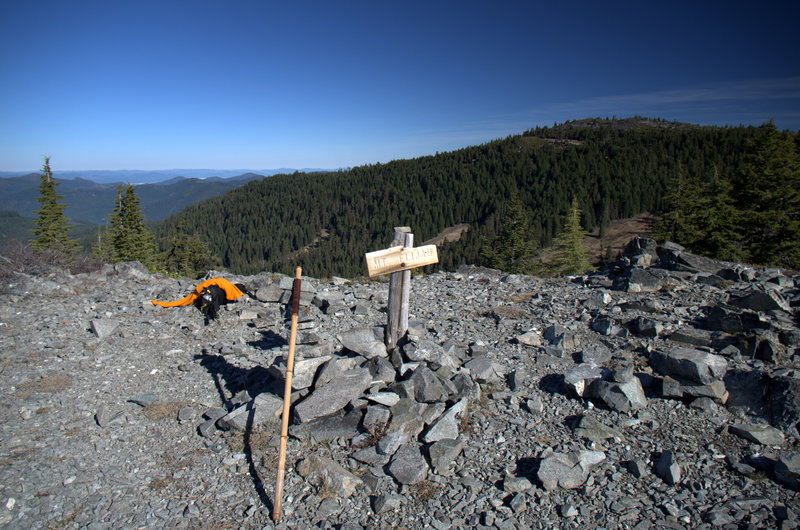 The summit of the higher Mt. Elijah, with Lake Mountain beyond.