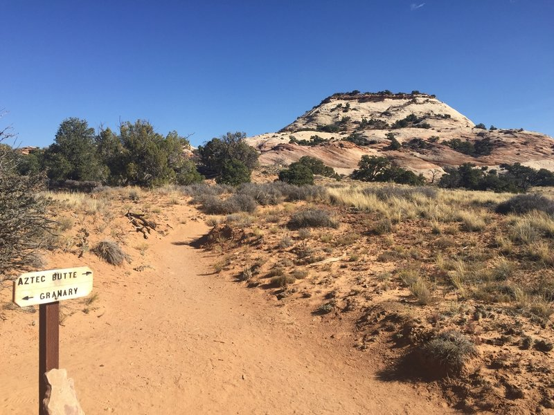 This is the junction of Aztec butte and the Granary. The butte ahead requires some rock scrambling to get up to the top.
