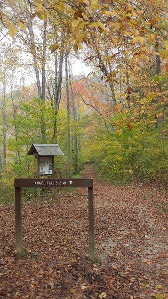 Angel Falls Rapid Trail trailhead in the fall.