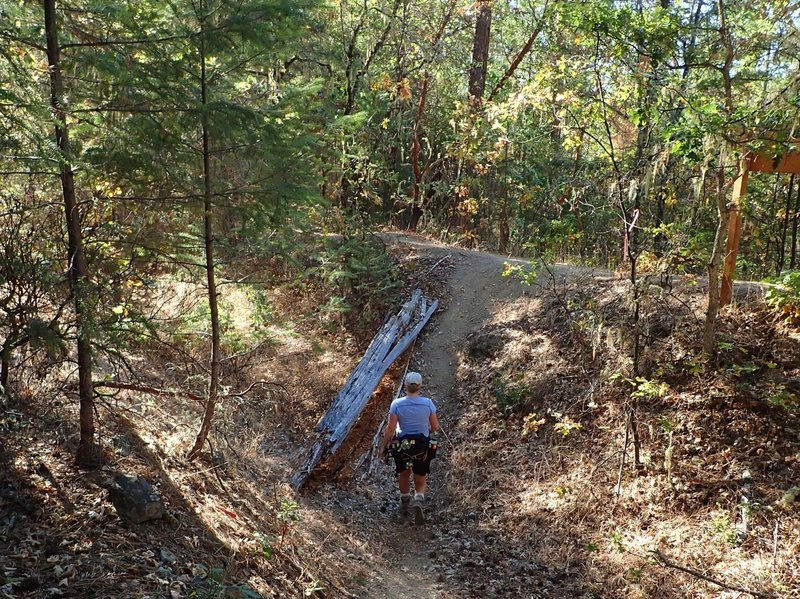 The Wolf Gap Access Trail ends at the Mine Ditch Trail
