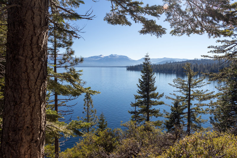 Lake Tahoe through the lush green on Rubicon Trail