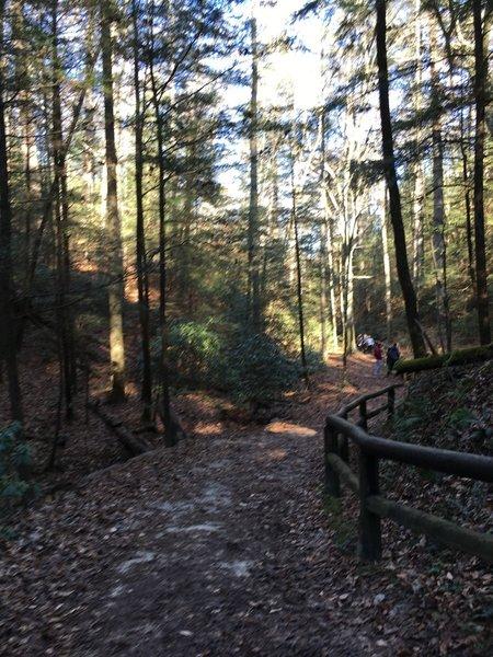 Original Trail up to Natural Bridge