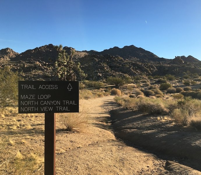 Trailhead sign at the parking area on Park Blvd in Joshua Tree National Park.