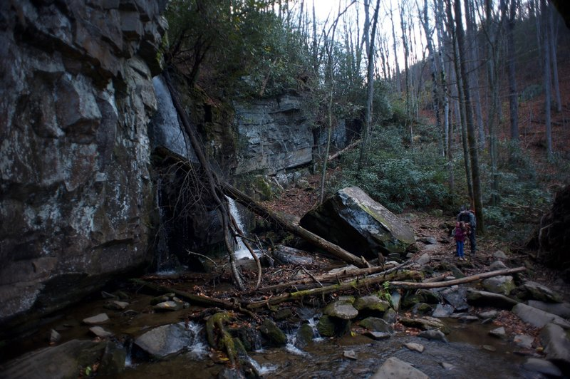 You have to hike down and cross the small creek to see the Falls.  No great swimming, but a nice Smokies waterfall all the same.