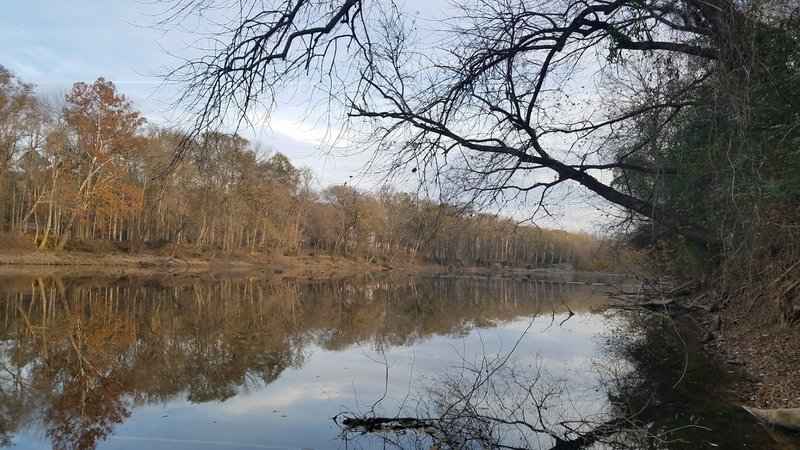 View of the Cape Fear River