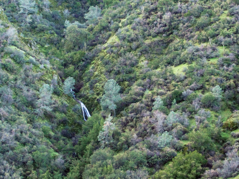 A distant view of the waterfalls on Mount Diablo's Falls Trail